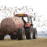 Fertiliser Flaws & Pesticide Problems