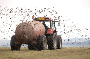 fertilising a field