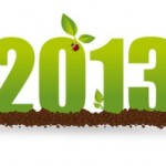 Green Steves New Years Resolutions For 2013