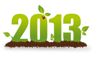 green new year's resolutions 2013